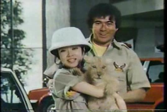 1982 Safari Carina driver 1