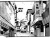 Shibukawa city