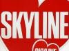 I heart Skyline