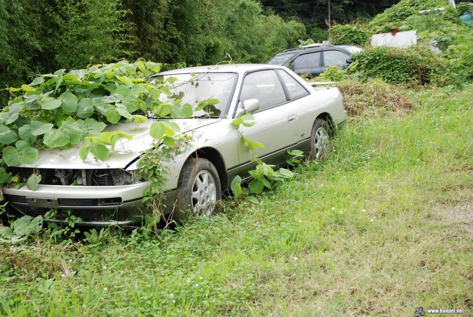 Nissan Silvia S13 Rustoseum