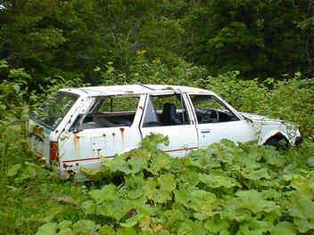 Carina SG TA67 wagon rustoseum