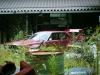 Abandoned Nissan Skyline C210 kaido racer