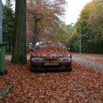 DOTS: Nissan 200SX S14 in fall