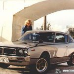 Family Album Treasures: Long haired Skyline GTX
