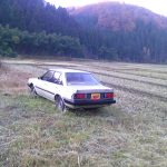 Carina Sightings: Rusty Carina SG in a field
