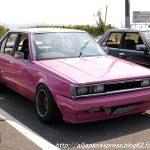 Carina Sightings: pink shakotan Carina AA63